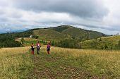 stock photo of prairie  - Trekking path through prairie grass at mountains and hills of central Serbia - JPG