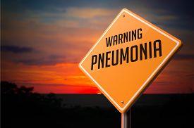 pic of pneumonia  - Pneumonia on Warning Road Sign on Sunset Sky Background - JPG