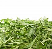 image of rocket salad  - Pile of Eruca sativa rucola arugula fresh green rocket salad leaves as a copyspace background composition isolated over the white background - JPG