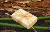 picture of driftwood  - Soap with bamboo grove on driftwood   - JPG
