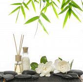 stock photo of gardenia  - Set of massage oil  - JPG