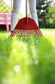 pic of plunder  - Woman in green and red garden rake based - JPG