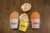 stock photo of count down  - Egg shells with egg cups shown lying with on a wooden background with marks inside counting down the days till hatching - JPG