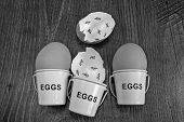 picture of count down  - Egg shells with egg cups shown lying with on a wooden background with marks inside counting down the days till hatching - JPG