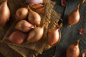 pic of red shallot  - Raw Organic Spicy Shallots on a Background - JPG