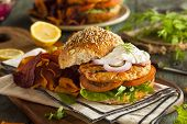 image of burger  - Homemade Organic Salmon Burger with Tartar Sauce - JPG