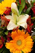 beautiful bouquet of flowers, background