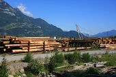 Lumber yard in British Columbia, Canada.