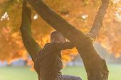 Young Boy Climbing An Autumn Tree Outdoors In A Park With Bright Evening Sunflare. poster