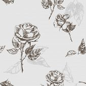 image of white roses  - Floral seamless pattern with rose - JPG