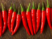 asian red chili padi