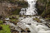 Chittenango Falls State Park, NY 2