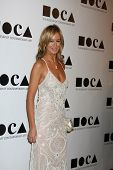 LOS ANGELES - NOV 12:  Lady VIctoria Hervey arrives at the MOCA Gala 2012 at MOCA on November 12, 2011 in Los Angeles, CA