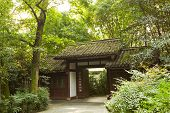 Chinese Style Residential In Forest