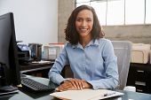 Young female professional sitting at desk in an office poster