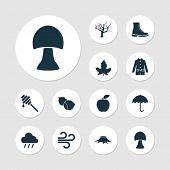 Seasonal Icons Set With Mushroom, Hazelnut, Wind And Other Tree Elements. Isolated Vector Illustrati poster