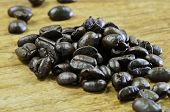 Macro Coffee Bean