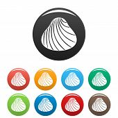 Hard Shell Icon. Simple Illustration Of Hard Shell Icons Set Color Isolated On White poster