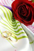 stock photo of hymen  - Valentine card consisting of the rose and wedding rings