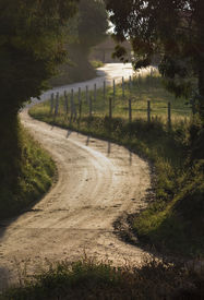 picture of long winding road  - A Country Road Winding in Sunset Backlight - JPG
