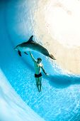 pic of oceanography  - Man and a friendly dolphin playing under the water - JPG