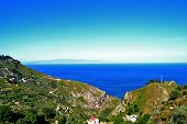 image of messina  - beautiful coast of Messina with vegetation and the blue sea - JPG