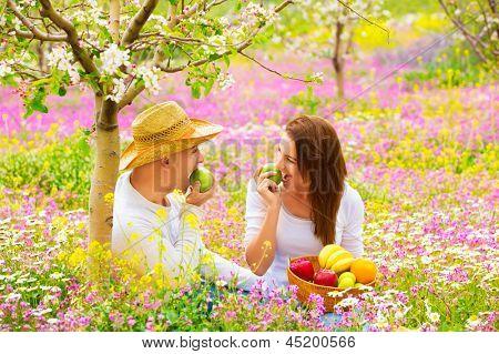 Постер, плакат: Счастливая пара на пикник в красивый цветущий сад есть здоровые органические продукты питания романтические свидания сумма, холст на подрамнике