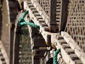 Lobster trap handles
