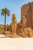 stock photo of ramses  - Statue of Ramesses II in Karnak temple in Luxor - JPG