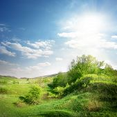 image of ravines  - Green ravine and trees lit by the sun - JPG