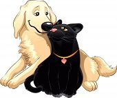 Lovely Cat And Dog