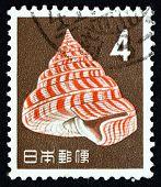 Postage Stamp Japan 1963 Emperor's Slit Shell, Sea Snail