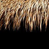 Telhado de sapé