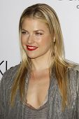 LOS ANGELES - JAN 28: Ali Larter at the Calvin Klein Collection & LA Nomadic Division 1st Annual Cel