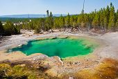 The Beautiful Green Hot Spring Pool in Yellowstone National Park