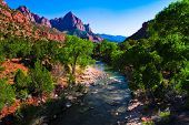 Beautiful Landscape in Zion National Park,Utah