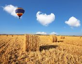 Stacks of harvested wheat beautifully and symmetrically stand in rows.  Red and blue balloon slowly floating over field after harvest