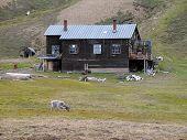 Spitsbergen's House
