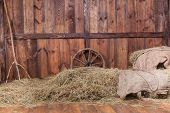 stock photo of wagon wheel  - Wood and hay background inside rural barn - JPG