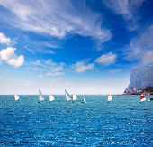 Little sailboats Optimist learning to sail in Mediterranean at Denia Alicante