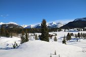 stock photo of mola  - A blue sky over Molas Pass in Colorado - JPG