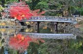 lake and Bridge in Nara, Japan
