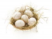 picture of baste  - Eggs - JPG
