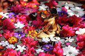 Flower Tantra
