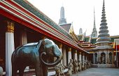 Elephant In Buddhist Temple