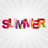 Color Gerbers Summer Banner, With Gradient Mesh, Vector Illustration