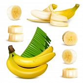 Set of photo-realistic vector illustrations. Ripe yellow bananas, slices and leaves.