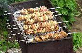 Pork Shish Kebab On Fire. Appetizing Fresh Meat Shish Kebab Prepared On A Grill Wood Coal, Outdor
