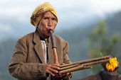 PANG MAPHA, THAILAND, NOVEMBER 20 : portrait of an old Lahu tribe woman playing Lusheng, a tradition