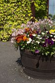 Barrel Planter With Summer Flowers